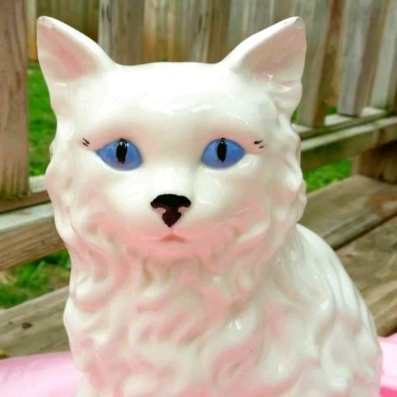 Unimpressed Feline